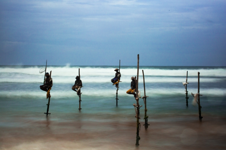 Sri Lanka Pole Fishing
